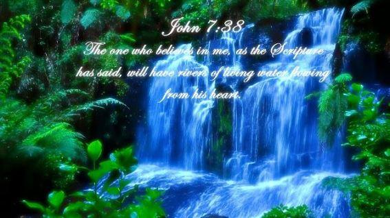 John 8_38