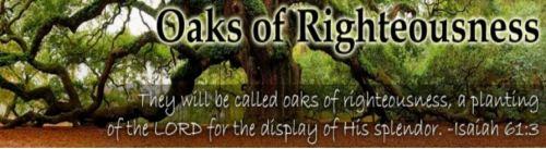 Isaiah 61_3