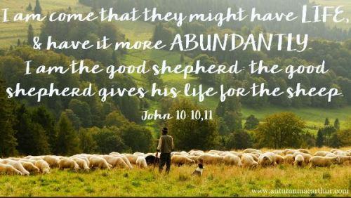 John 10_10-11