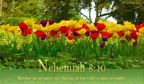 Nehemiah 8_10