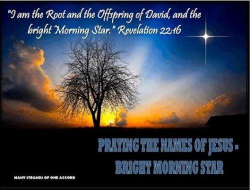 Revelation 22_16