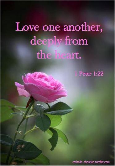 1 Peter 1_22