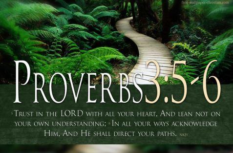 Proverbs 3_5-6 NKJV