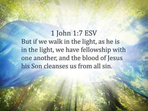 1 John 1_7 (3)