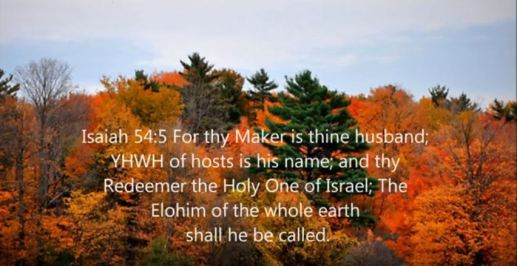 Isaiah 54_5