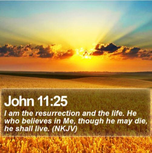 John 11_25