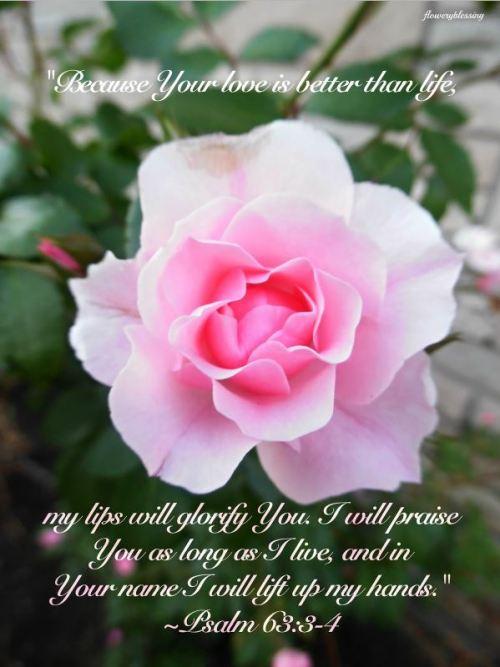 Psalm 63_3-4 (2)