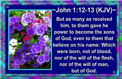 John 1_12-13