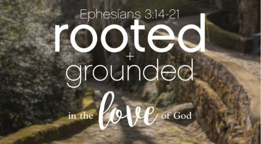 ephesians 3_14-21 rooted & grounded