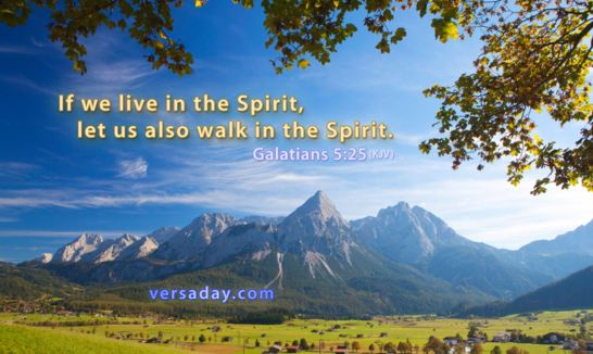Galatians 5_25