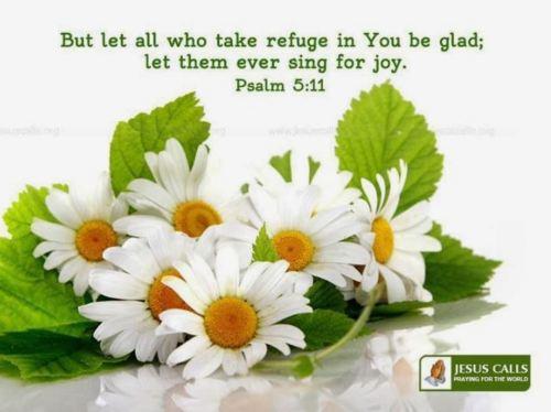 Psalm 5_11
