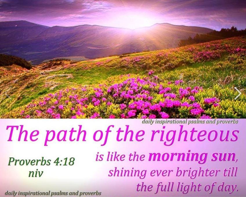 Proverbs 4_18 (5)